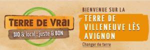 Terre de Villeneuve les Avignon