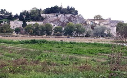 Au bord du Rhône et au pied du Palais des Papes