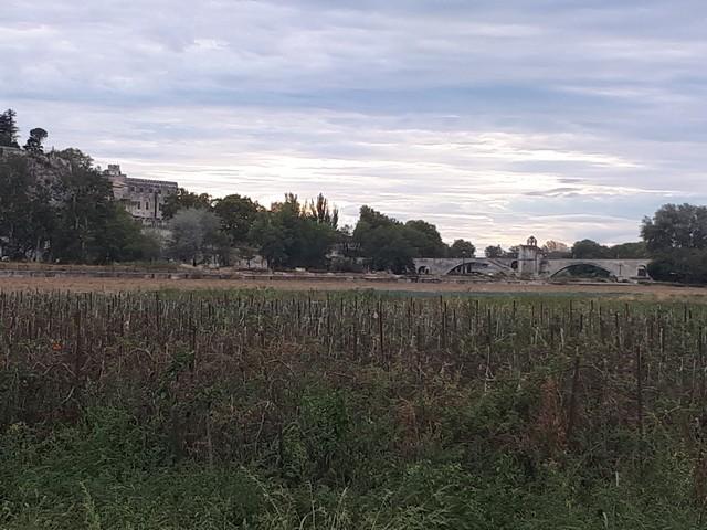 Vue sur le Pont d'Avignon au bord du Rhône