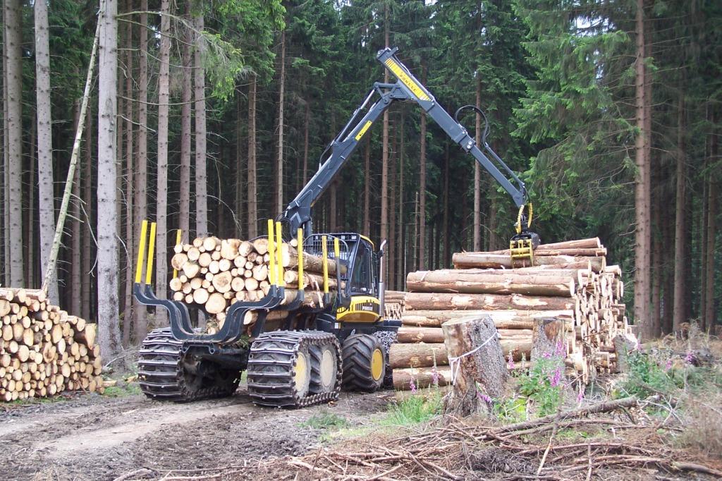 Der umweltgerechte Maschineneinsatz, hier das Rücken von Kurzholz mit der mit         Gleitschutzbändern ausgerüsteten Schulungsmaschine des Forstlichen Bildungszentrums, hat im Vorbereitungskurs und in der Prüfung einen großen Stellenwert. (Foto: Landesbetrieb Wald und Holz)