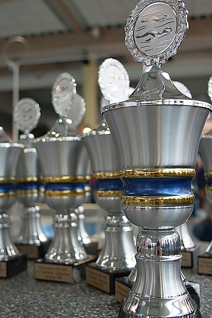 Zehn Kreismeistertitel für den SV Neptun