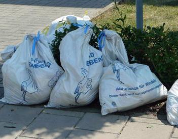 SPD fordert: Entsorgung von Windeln organisieren