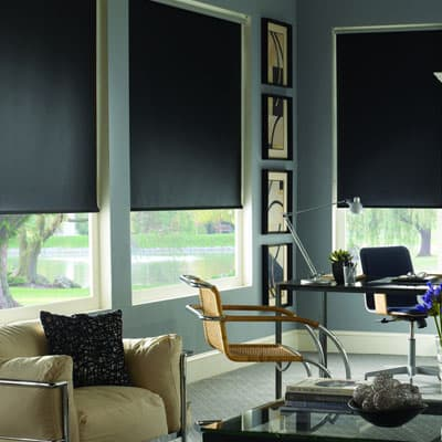 Blinds.com Brand Signature Blackout Roller Shade