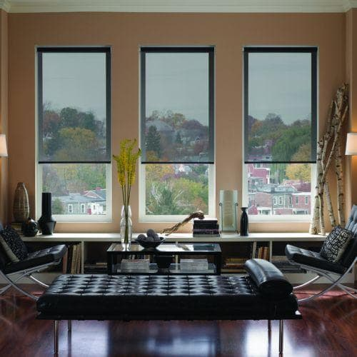 Blinds.com Brand Signature Roller Shades in Newport Ash