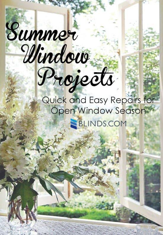 Summer-Window-Projects