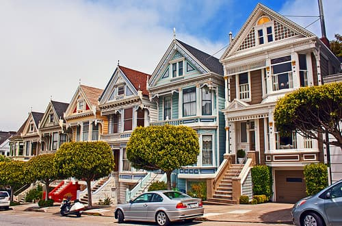 painted ladies