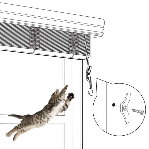 cat-jumps-for-cord