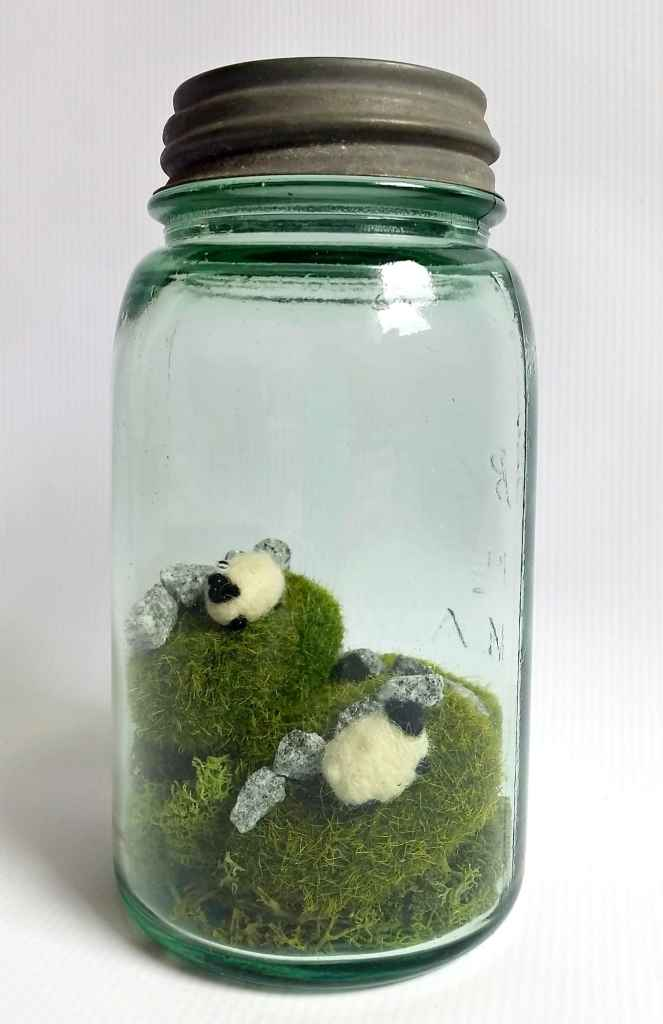 St patrick's day decor - moss and sheep ireland in a jar