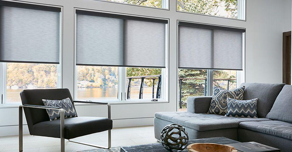 blinds for living room ideas with dark brown sofas products custom and shades to go roller shade are displayed in this modern