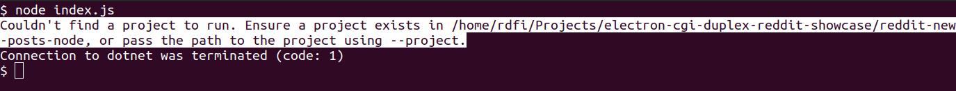 dotnet run error message displayed in node