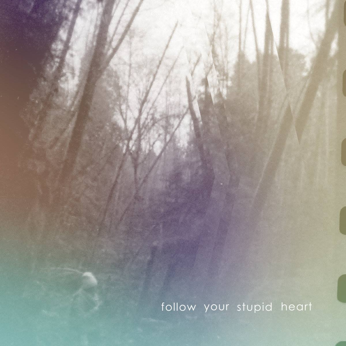 Follow Your Stupid Heart Album Art