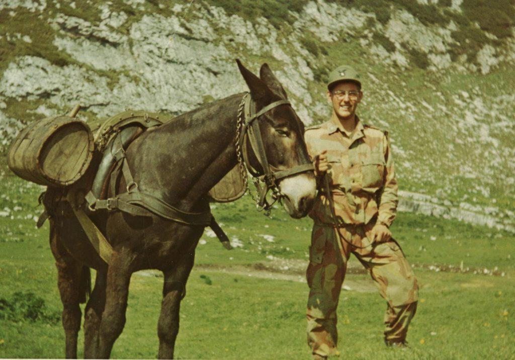 Servizio militare muli aiutano gli Alpini del sesto reggimento di Brunico