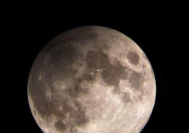 Luna primo viaggio privato Elon Musk Yusaku Maezawa