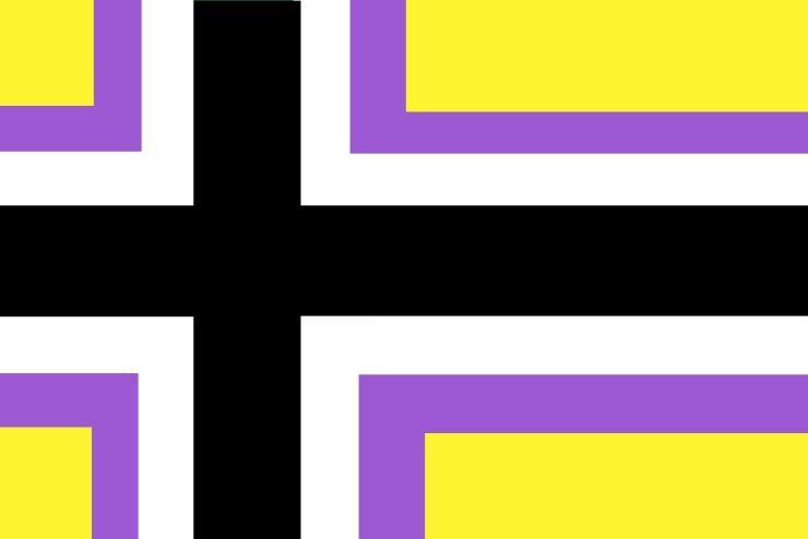 danimarca bandiera non binary
