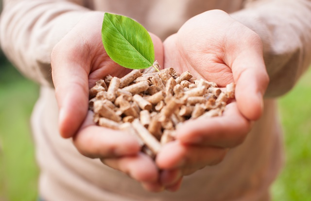 Biomass leads to earnings rise for Drax