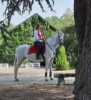 spectacle-equestre-abbatiale-01