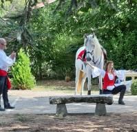 spectacle-equestre-abbatiale-05