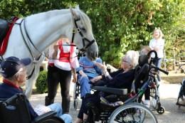 spectacle-equestre-abbatiale-18