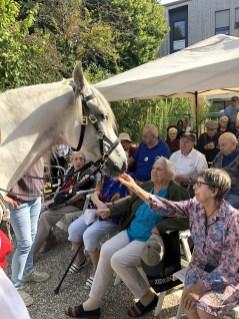 spectacle-equestre-abbatiale-23