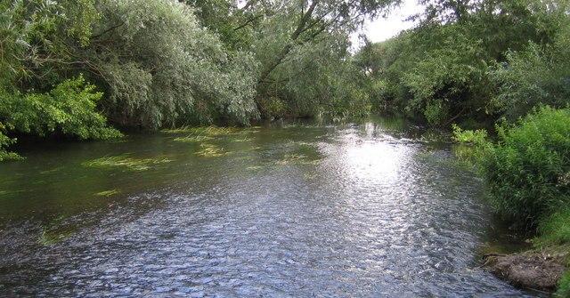 bras mort rivière