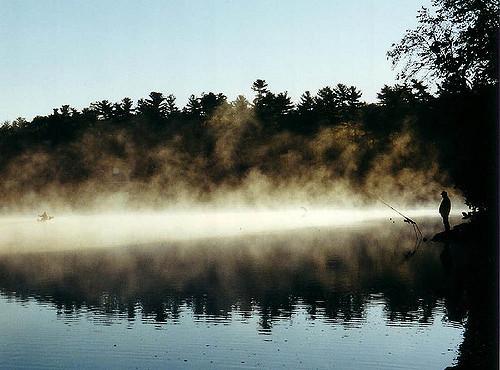 Comment pêcher la carpe en automne