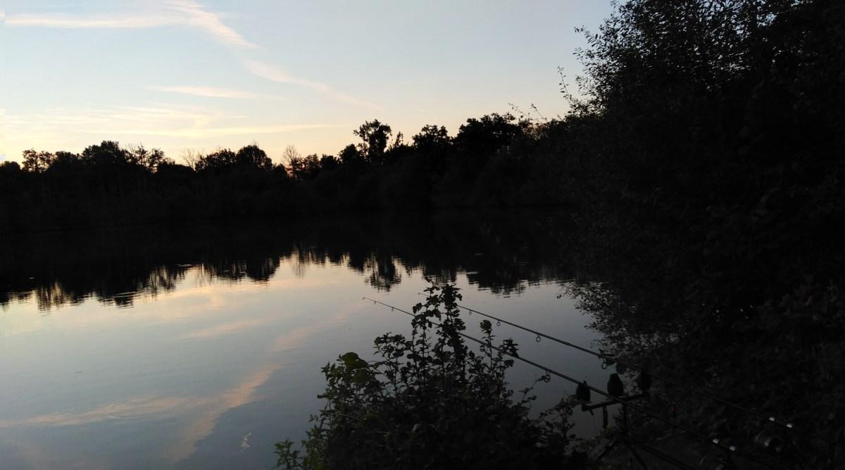 Pêche en étang : astuce pour faire rapidement du poisson !