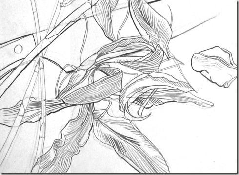 Les tapes pour faire un dessin de contour blog le dessin - Dessin contour ...