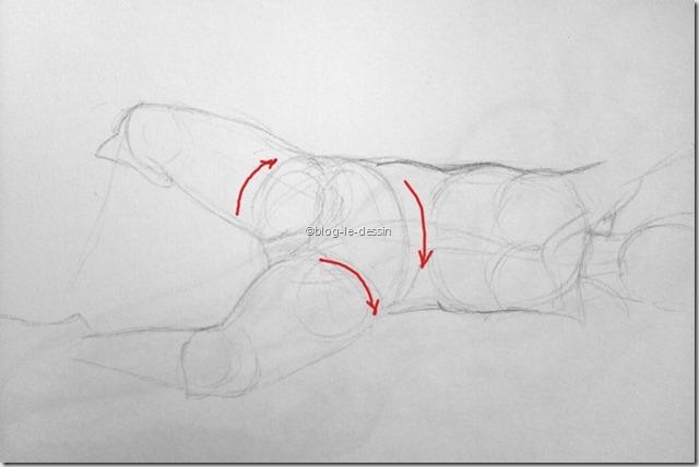 dessin corps