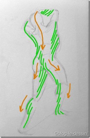 dessin de corps cascadeflèches (800)