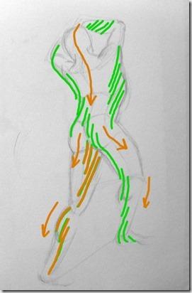 dessin de corps cascadeflèchescontremouvement