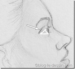 portrait femme profil_sclérotique