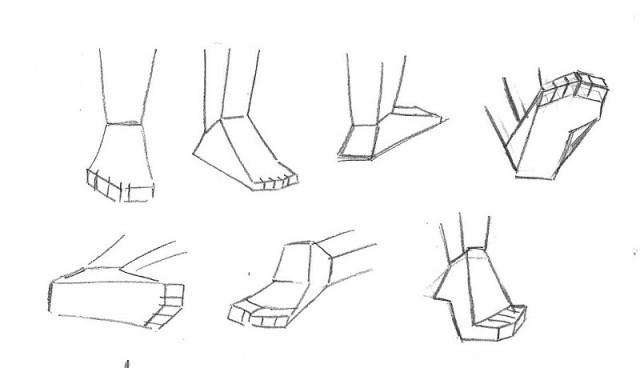 illustration plan des pieds_j