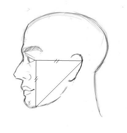3 principes pour apprendre dessiner une oreille - Visage profil dessin ...