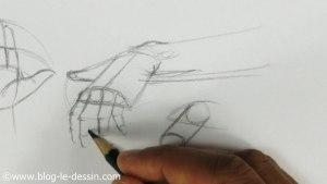 dessin de la taille de la main en position de trois quarts
