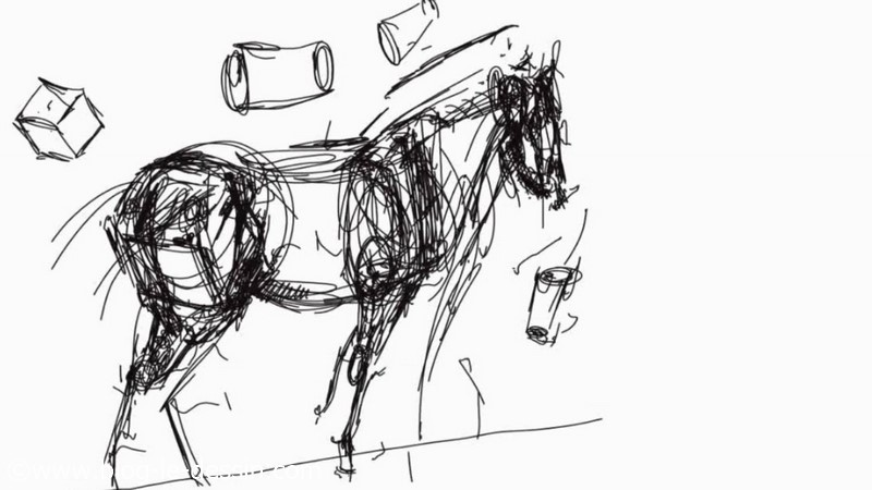 Quelles proportions pour dessiner un cheval blog le dessin - Dessiner un squelette ...