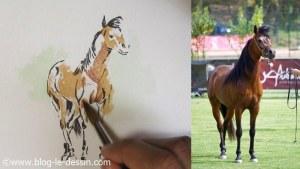 Application de la peinture aquarelle sur le corps du cheval