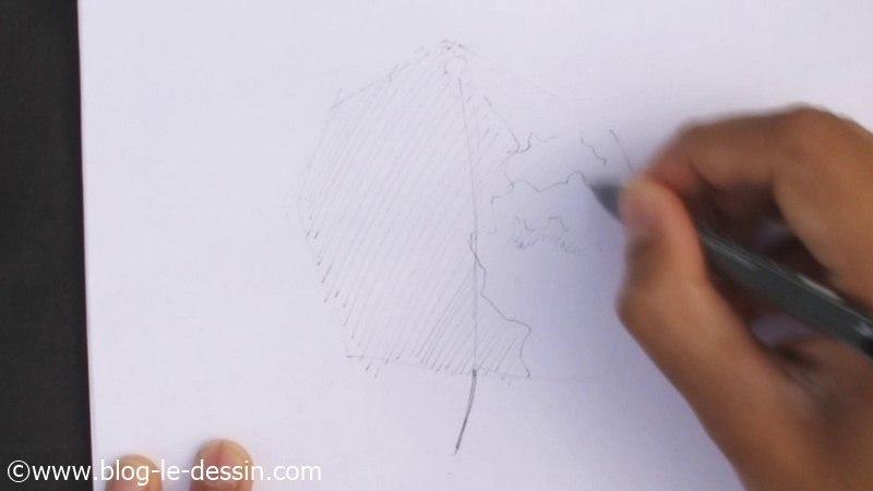 etape dessiner arbre sur le vif avec feutre encre