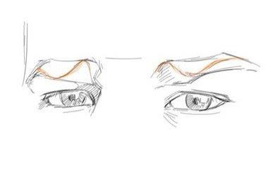 dessiner la courbe des sourcils