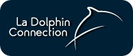 Visiter le site de La Dolphin Connection