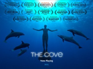 The Cove - La Baie de la Honte