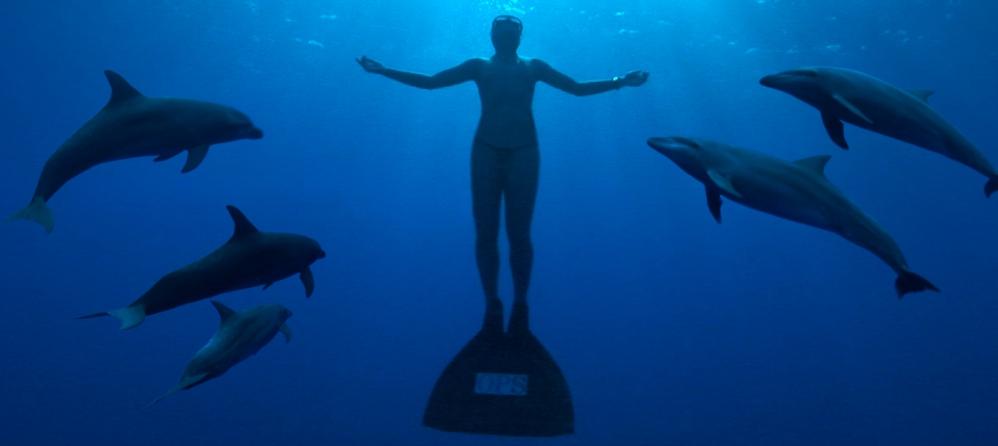 The Cove - La Baie de la Honte. Oscar du meilleur documentaire 2010