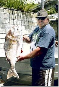 Le poisson offert par Moko - Photo du Gisborne Herald