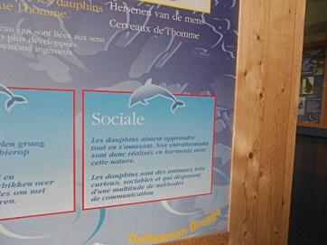 Bruges-2014-pedagogie-vie-sociale