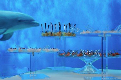 italie-genova-dolphin-room