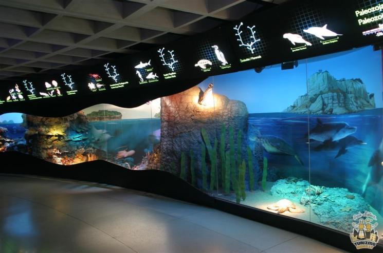 lituanie-sea-museum