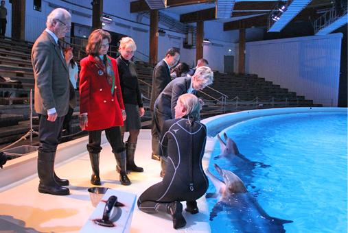 Le roi et la reine de Suède visitent Kolmarden