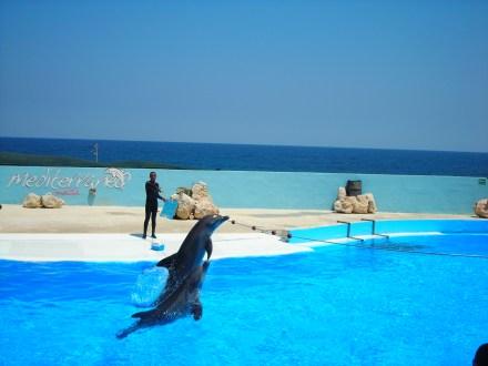 Malte-Mediterraneo1