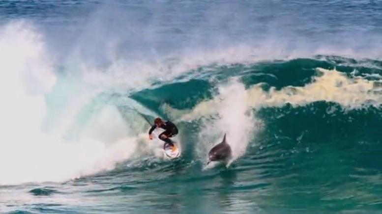 site surf fille