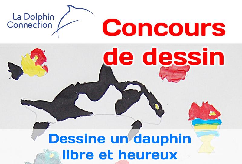 Concours de dessin de La Dolphin Connection