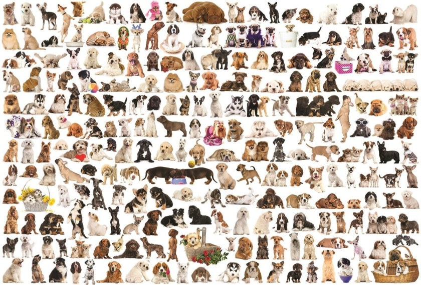 the-world-of-dogs-2000pc-eurographics-jigsaw-puzzle